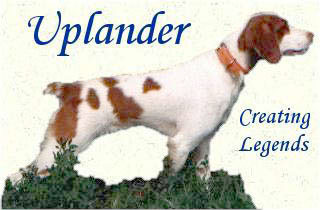 Our Recommended Trainer - Uplander Kennels